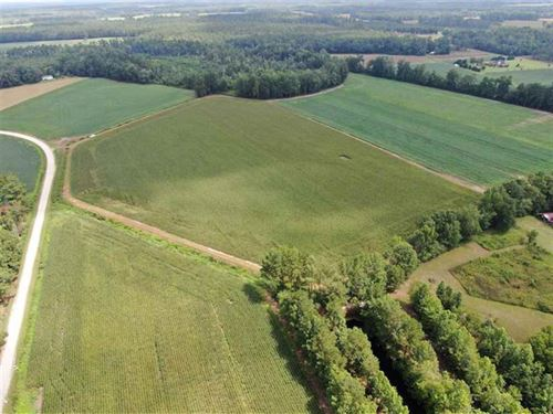 Under Contract, 38 Acres of Farm : Cerro Gordo : Columbus County : North Carolina