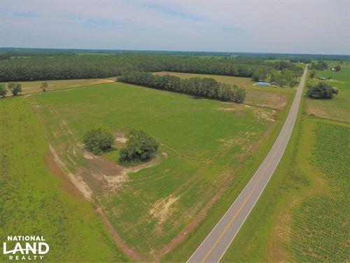 Greene County Mini Farm : Snow Hill : Greene County : North Carolina