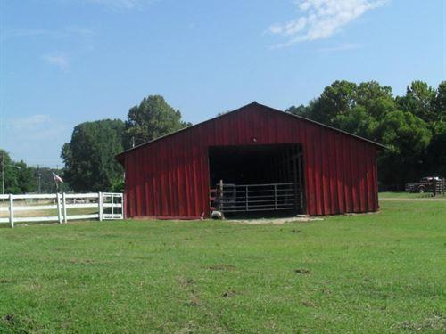 Spirit Horse Farm : Byram : Hinds County : Mississippi