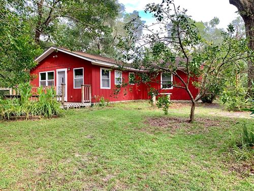 Fanning Springs Home, Guest House : Fanning Springs : Gilchrist County : Florida