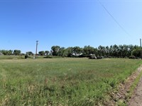 3 Vacant Lots Subdivision Forest : Glendive : Dawson County : Montana