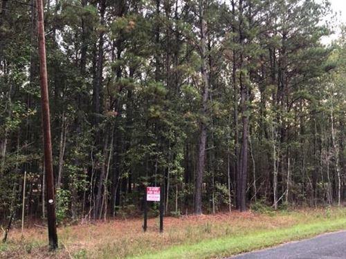 Garvin Tract : Garnett : Jasper County : South Carolina
