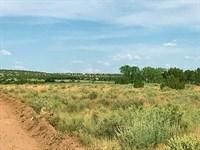 Northern Az High Country Homesites : Snowflake : Navajo County : Arizona