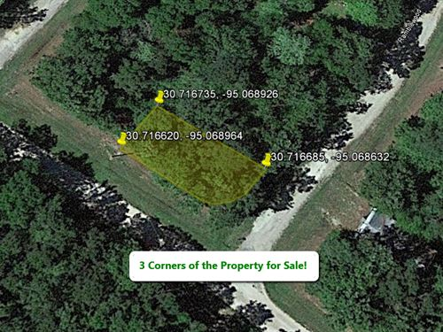 Corner Lot Recreation Land : Livingston : Polk County : Texas