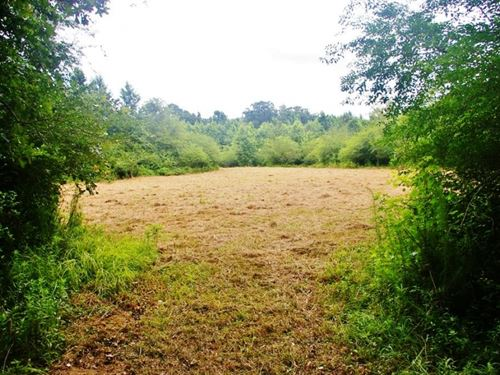 41.71 Acres Hunting Land For Sale : Smithdale : Amite County : Mississippi