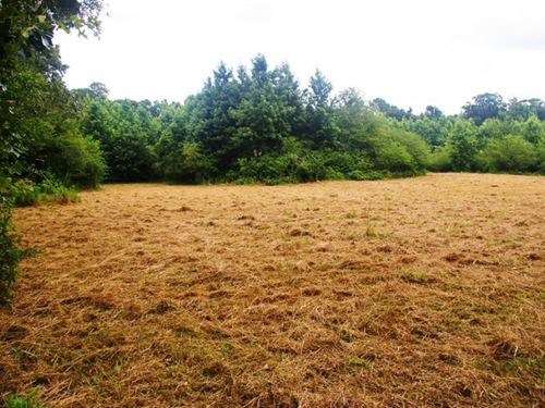 27 Acres Hunting Land For Sale With : Smithdale : Amite County : Mississippi