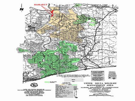 16.56 Acres On Tombigbee & Al River : Tensaw : Baldwin County : Alabama