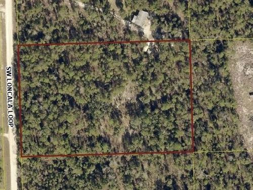 5 Beautiful Acres Fort White : Fort White : Columbia County : Florida