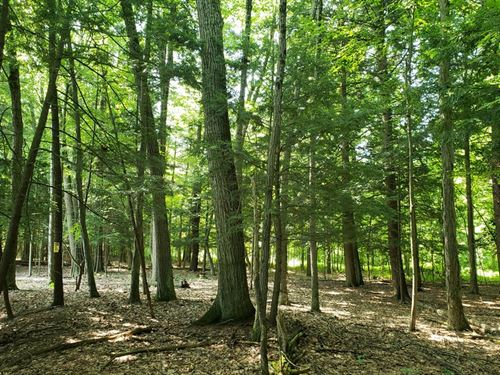 Approved Building Lot Near Saratoga : Queensbury : Warren County : New York