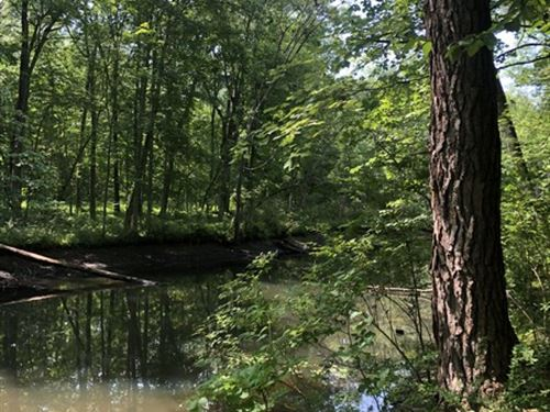 On The Canal, Near Saratoga : Queensbury : Warren County : New York