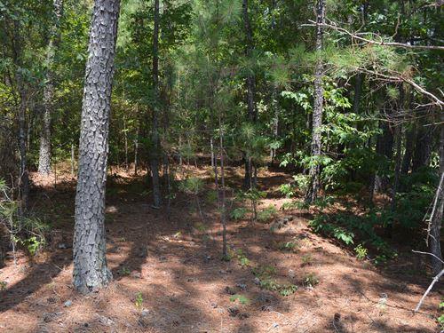 Beautiful Jordan Lake Area : Apex : Chatham County : North Carolina