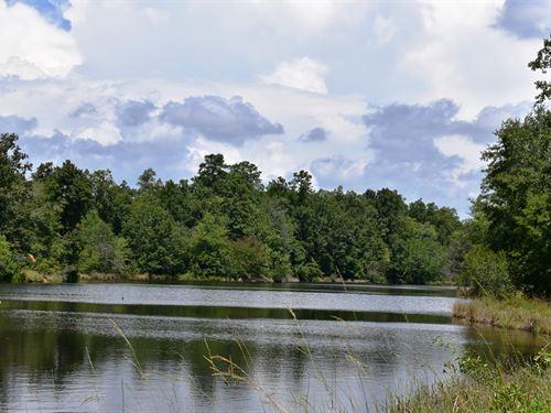 Hopewell Road Tract : Roberta : Crawford County : Georgia