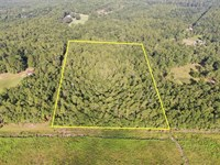 5 Acre Residential Lot : Madison : Madison County : Florida
