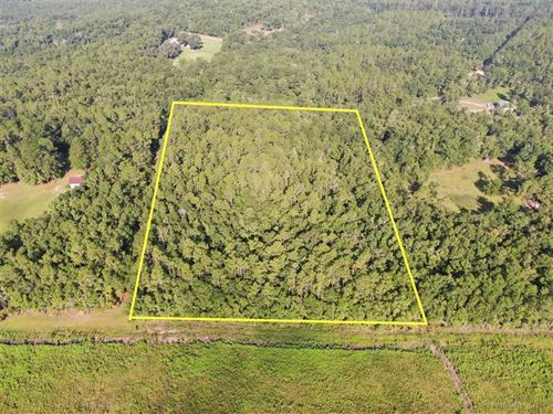 5 Acre Residential Lot : Madison : Florida