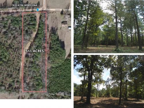 5 Acres In Webster County In Cumber : Cumberland : Webster County : Mississippi