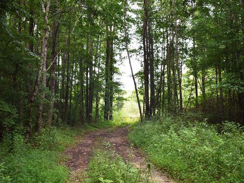 Mountain Creek Tract : Molena : Pike County : Georgia