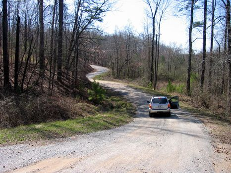 176 Acres : Jasper : Pickens County : Georgia