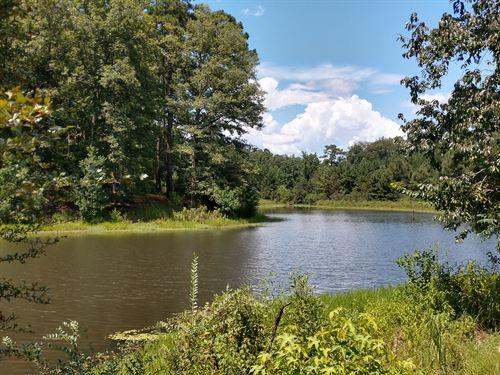 Farm With 4 Ac Lake Near Macon : Macon : Jones County : Georgia