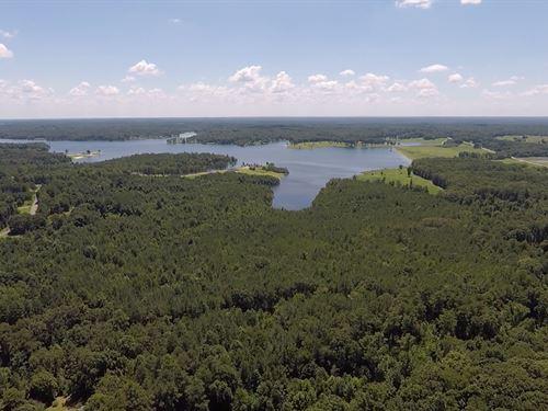 47+ Acres Near Recreational Lake : Huntingdon : Carroll County : Tennessee
