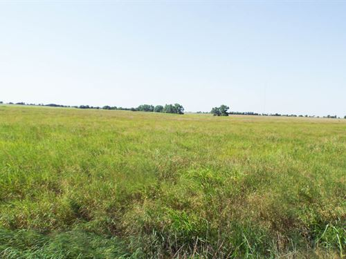 80 Acres Grassland : Medford : Grant County : Oklahoma