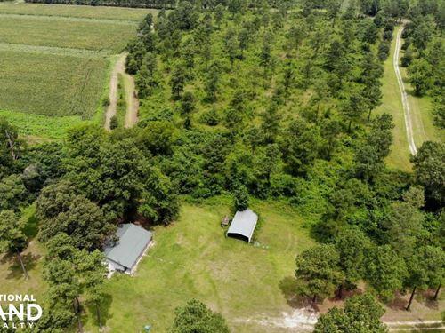 Clarendon Wingshooter's Farm : Summerton : Clarendon County : South Carolina