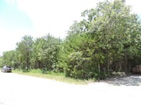 Wooded Building Lot Diamond City : Diamond City : Boone County : Arkansas