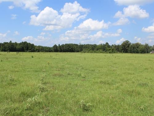 Cattle Ranch / Recreation Marion : Jefferson : Marion County : Texas