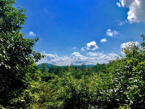 Remote Mountain Getaway Floyd : Willis : Floyd County : Virginia
