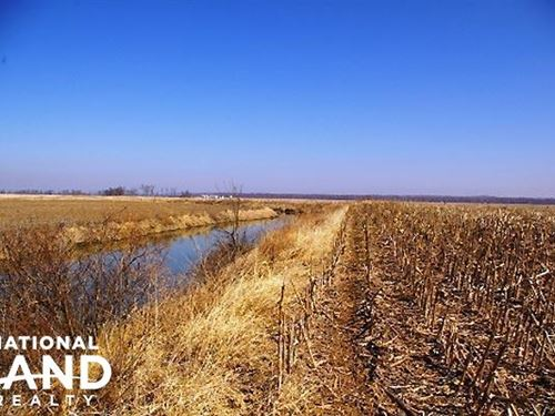 Duck Hunting And Row Crop Acreage : Elsberry : Lincoln County : Missouri