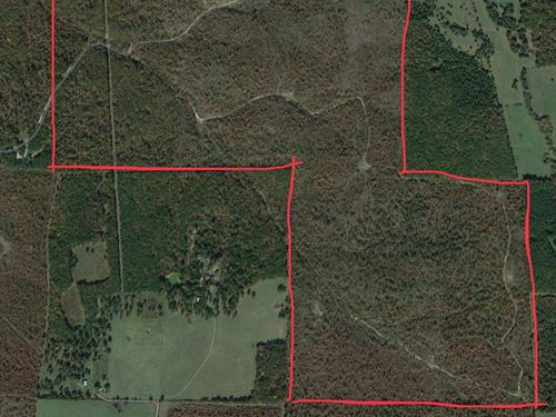 400 Ac Southern Mo Hunting / Timber : Hartshorn : Texas County : Missouri