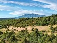 Hunting Ranch Near Blm Land : Walsenburg : Huerfano County : Colorado