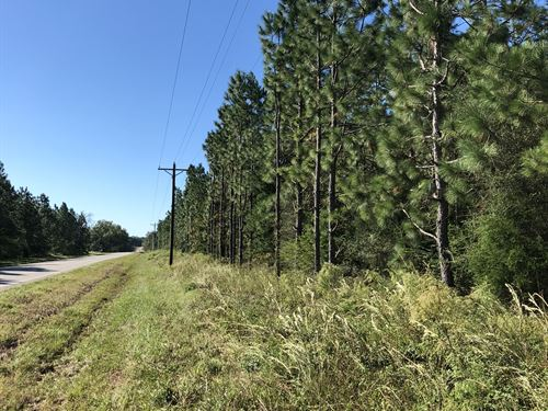 Alabama Land for Sale : LANDFLIP