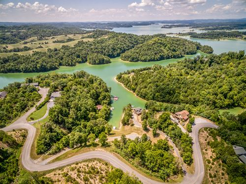 Double Lot With Douglas Lake Views : Dandridge : Jefferson County : Tennessee