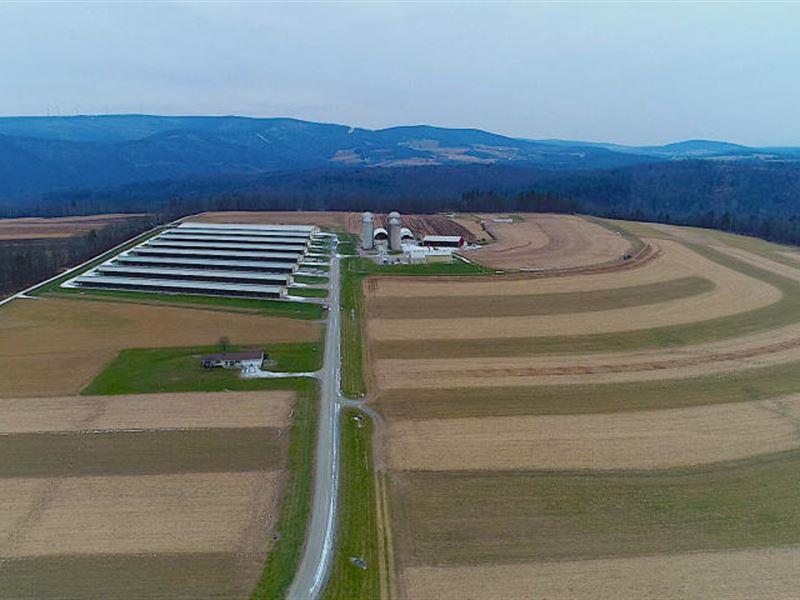 Beautiful Self Sustaining Farm : Tunkhannock : Wyoming County : Pennsylvania