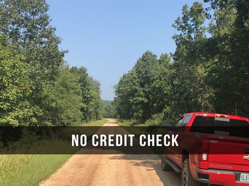 $500 Down On Land On Public Land : Birch Tree : Shannon County : Missouri