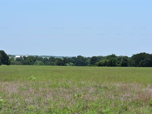 22.76 Acres In Tx, Owner Financing : Coupland : Williamson County : Texas