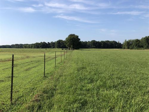 White County Arkansas Land for Sale : LANDFLIP