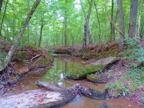 North Greene Hunting Retreat : Greensboro : Greene County : Georgia