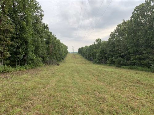 Nice 80 Acre Hunting Tract Hickory : Cross Timbers : Hickory County : Missouri