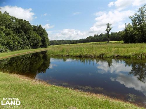 Salkehatchie Preserve : Smoaks : Bamberg County : South Carolina