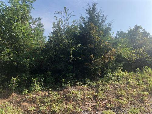 Land For Sale, Latimer Co, Oklahoma : Red Oak : Latimer County : Oklahoma