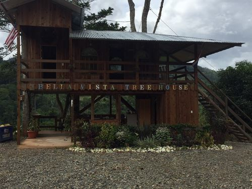 9 Ac Self Sufficient Farm, 2 Cabins : Pejibaye : Costa Rica