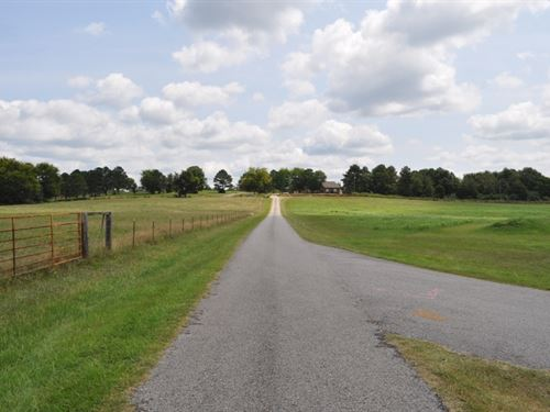 Transitional Pasture Land : Moundville : Hale County : Alabama