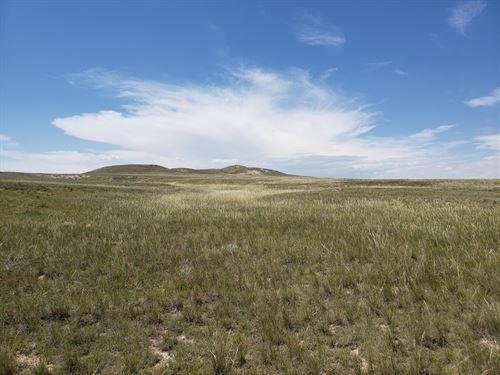 Bashor Keota Ranch : Briggsdale : Weld County : Colorado