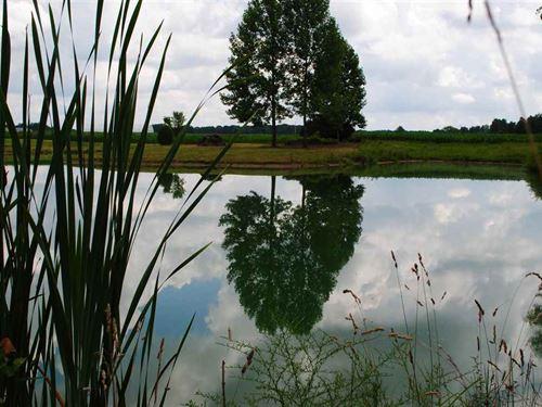 Indiana Camping Land for Sale : LANDFLIP