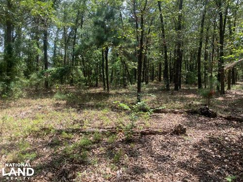 Roseboro Hunting Land & Homesite : Roseboro : Sampson County : North Carolina
