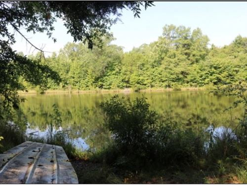 197 Acres In Newton County In Coneh : Conehatta : Newton County : Mississippi