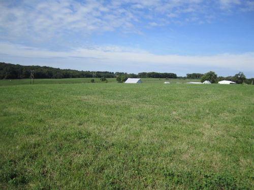 Cooper County MO Fenced Pasture : Bunceton : Cooper County : Missouri