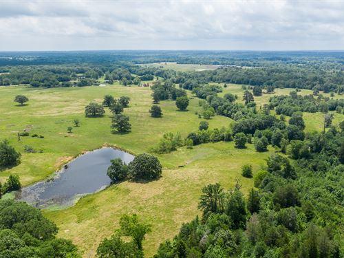 Land Lakes Fishing Hunting Grazing : Quitman : Wood County : Texas