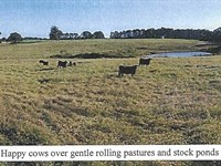 1223 Acres Cattle Ranch : Como : Panola County : Mississippi